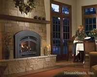 Excalibur Large Gas Insert And Gas Fireplace Insert E33 Ng10