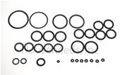 Embassy Celsior O-ring Kit for Hydraulic Group - BIN 8105 - 6281506 - Non-returnable