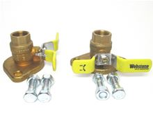 Webstone 1 inch Brass Shut Off Flange Set With Ball Valves, T Handles and Threaded Connections - 40404
