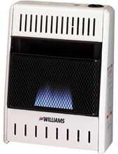 Williams Vent-Free Gas Heater Blue Flame with Glass Front and Built-in Thermostat Natural Gas/Liquid Propane 1096513.9
