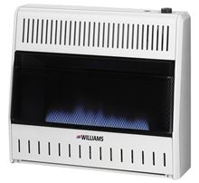 Williams Vent-Free Gas Heater Blue Flame with Glass Front and Built-in Thermostat Liquid Propane 2056511.9